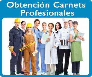 carnets profesionales